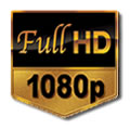 ip cameras full hd 1080p